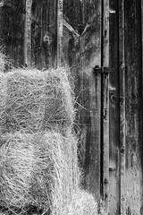 Hay (t s george) Tags: wood grain newengland explore farmlife canon5dmarkii