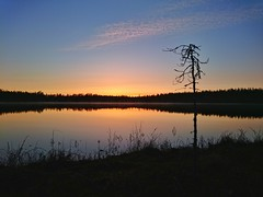 Yesterdays sunset (lindblomlinus) Tags: sunset lake reflection nature colors landscape outdoor sony cellphone sunsets z3 solnedgång landskap xperia sonyxperia