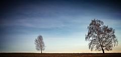Horn Sedlo (trekkpics) Tags: mountains berg schweiz tiere nationalpark czech outdoor pflanze pflanzen bad eisenbahn bahnhof tschechien bier e3 czechmountains trasa bahn budweiser wald baum wandern brna burg louka deutsche felsen gebirge schsische lausitz dn hensko bergsteigen zittauer hory bhmen oberlausitz waltersdorf lausche oybin sedlo elbsandstein prebischtor horni snnk bhmische europischer schandau lausitzer hochwald esk vcarsko fernwanderweg stezka toltejn pravick evropsk luick tannenberg jedlov hochwaldbaude colourartaward gabrielensteig lu mezn gabrielina dlkov kammloch