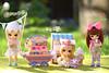Willow, Robin & Mia - Little Dal Humpty-Dumpty, Sona, Princess Pinky (Sophie's Pullips) Tags: cute miniature doll princess little pastel families bad dal 11 pinky tiny groove pullip humpty dumpty sylvia sona himitsu sylvanian obitsu 11cm