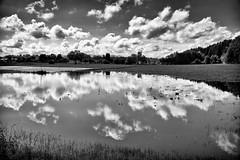 Wolkenspiegelung (Helmut Reichelt) Tags: leica bw juni germany deutschland bavaria oberbayern wolken sw spiegelung regen frühling hochwasser überschwemmung leicam geretsried wolkenspiegelung böhmwiese silverefexpro2 leicasummilux35mmf14asphii typ240 regensee captureone9