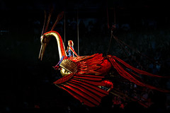 HFT2014-01-03 (frank.goellisch) Tags: cute bird giant golden flying tour dragon arena your helene birdy called 2014 mechatronic colorplay howtotrain helenefischer