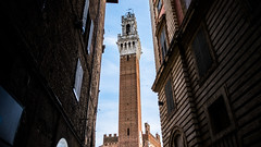 Torre del Mangia - Siena, Italy - Travel photography