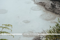 Wai-O-Tapu Thermal Wonderland - Rotorua, New Zealand (Naomi Rahim (thanks for 2 million hits)) Tags: rotorua newzealand nz 2016 waiotapu northisland travelphotography travel nikon nikond7000 geothermal hotspring spring pool lake water steam fog sulphur mudpools nature landscape wanderlust volcanic