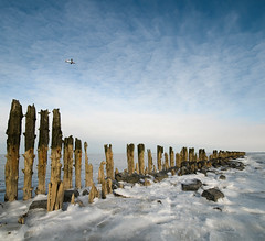 Chill (Danil) Tags: winter holland ice netherlands waddenzee landscape frozen nikon daniel tide flight salt nederland chilly groningen icy wad friesland schiermonnikoog landschap ijs koud paaltjes d300 zout bosma moddergat paesens vertorama