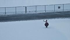 Self-Portrait (Leon Fishman) Tags: road camera new york selfportrait snow newyork delete10 umbrella delete9 delete5 delete2 football delete6 delete7 save3 delete8 delete3 delete delete4 save save2 albany snowing suny delete11 deletedbydeletemeuncensored leonfishman