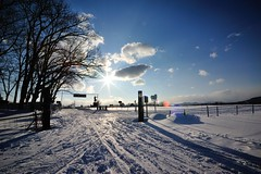 There's Always A Way (mith17) Tags: street light snow japan landscape idea sapporo hokkaido sunlit