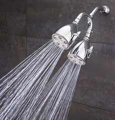 The Heavenly Dual Shower (S-2222-HS-CP) (SpeakmanShowers) Tags: shower bath shower shower collection speakman