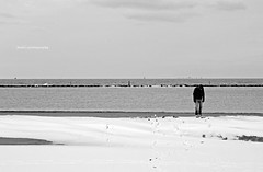 .la neve sul mare |3 (]babi]) Tags: winter boy sea blackandwhite panorama snow cold ice beach landscape sand mare sad emotion solo neve lonely melancholy inverno freddo spiaggia malinconia biancoenero ragazzo maredinverno emozione lanevesulmare