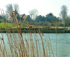 Across the Medway to Halling (helenoftheways) Tags: uk water freeassociation reeds kent churches rochester bishopspalace mistyday halling rivermedway wouldham