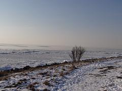 DSC02531 (hoekiepoekie) Tags: wintertime ijsselmeerkust