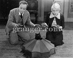 0035773 (Granger Historical Picture Archive) Tags: 1920s pet black men film cat early women feline scene photograph american actress actor catch lampshade silentmovie trap granger faa ec33 thegrangercollection ecfamily grangercollection grangercom wwwgrangercom