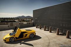 Lamborghini Aventador LP 700-4 (Desert-Motors Automotive Photography) Tags: italian exotic lp lamborghini supercar 7004 hypercar aventador