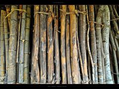 Firewood (Furjio) Tags: china travel town guilin guanxi pingan