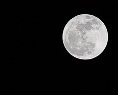 Full Moon (Bobbi Taylor) Tags: moon virginia spider norfolk fullmoon brightmoon moonpic moonphoto dullmoon