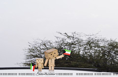 11/365 Happy Kuwaiti National Day (Samlicious) Tags: flag celebration cardboard national kuwait february celebrate kuwaiti q8 nationalday danbo kuwaitflag 25feb danboard kuwaitnationalday minidanbo 25kuwait26