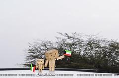 11/365 Happy Kuwaiti National Day (Samlicious) Tags: flag celebration cardboard national kuwait february celebrate kuwaiti q8 nationalday danbo kuwaitflag 25feb danboard kuwaitnationalday minidanbo 25kuwait26