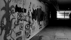 (DispositivoUmano) Tags: bw writing graffiti blackwhite tunnel bn writers murales biancoenero friuli udine friuliveneziagiulia viariccardodigiusto