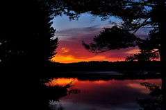 Dawns reflection (l_dewitt) Tags: morning trees sun lake reflection water clouds sunrise dawn nikon connecticut newengland pines rise northeast whitepine southeastern d5000 mygearandme