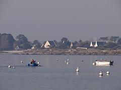 départ pour la pêche (camaroem56) Tags: bretagne armor finistère buoyant