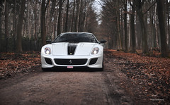 599 GTO (Willem Rodenburg) Tags: road street trees wild wallpaper white black tree photoshop 50mm photo official nikon belgium belgie stripe ferrari f16 pearl gto mm 50 limited edition supercar willem v12 brasschaat 599 d90 striping cs5 hypercar rodenburg 599gto