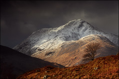 Sgurr Thuilm (angus clyne) Tags: uk morning travel winter light cloud sun mountain snow storm tree fall canon landscape shower climb coast scotland highlands europe branch wind zoom mark walk bare hill scottish fresh glen filter ii lee lone 5d loch rowan slope knoydart 70200mm mountainscape arkaig sgurr pean 70200mmlens thuilm dessarry saariysqualitypictures flickrsfinestimages1