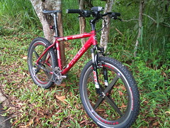 TREK 3700 (imranbecks) Tags: bike bicycle trek spoke spokes wheels bikes carbon fiber fibre roks 3700 spinergy revx