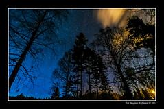 Kongsberg Night-1, Explorer #157 Mar 13, 2012 (Tor Magnus Anfinsen) Tags: winter cloud snow tree ice colors norway night river star norge forrest aurora kongsberg lgen
