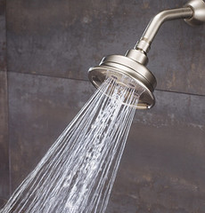 Anystream Assana Showerhead (S-3013) (SpeakmanShowers) Tags: shower bath shower shower collection speakman