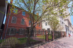 Longfellow House (Corey Templeton) Tags: city house tree brick museum fence portland other spring maine wideangle landmark sidewalk portlandmaine historical longfellow sigma1020mm congressstreet henrywadsworthlongfellow