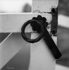 broken latch (jdweissphoto) Tags: bw 120 6x6 film fence mediumformat square hasselblad latch 120mm tmax100 500cm