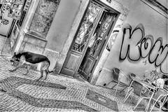 HDR Faro! (CatherineDellPhotography) Tags: streets portugal faro graffiti nikon stones rustic algarve cobbles hdr d600 braketing