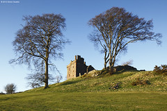 Two trees visiting a castle (SwaloPhoto) Tags: trees shadow castles abandoned grass scotland perthshire ruin fields historicscotland ancientmonument balvairdcastle canoneos5dmkii canontse24f35lii