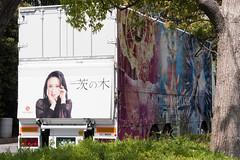 Sachiko Kobayashi wrapping truck in Nikoniko Tyoukaigi 2