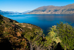 Lake Wanaka (Jocey K) Tags: morning autumn trees newzealand sky hills clear southisland centralotago cabbagetree wanaka mountians lakewanaka braken