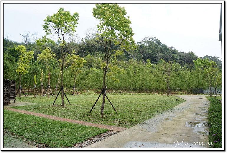 大溪茶廠 (6)
