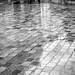 Rain in Paris / Shades of grey