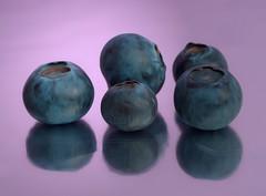 Blueberrys (Xtraphoto) Tags: blue stilllife macro reflection art fruits stillleben blau makro beeren frucht spiegelung photoart frchte obst blueberrys blaubeeren fotokunst