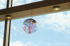 Look Up to the Sky (littlekiss) Tags: sky stilllife glass colors shop display squamish glassball littlekiss