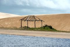 Nas margens do rio (felipe sahd) Tags: brasil maranho dunas nordeste mandacaru riopreguias