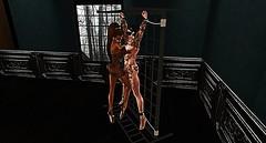 016 (djolyx) Tags: sexy fetish noir bdsm piercing sl secondlife rack plug mistress kinky slave sheer