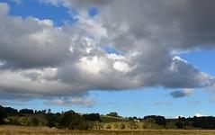 Tuckurimba Ridge (dustaway) Tags: winter sky landscape horizon australia cumulus nsw australianlandscape cloudscape ruralaustralia northernrivers rurallandscape richmondvalley tuckitucki wilsonsrivervalley tuckurimba
