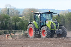 Claas Arion 640 Tractor with an Amazone 6 Meter Power Harrow (Shane Casey CK25) Tags: county ireland horse irish 6 plant tractor green field set work pull hp nikon traktor power earth farm cork farming working cereal grow machine ground machinery soil dirt till crop crops growing meter farmer agriculture dust setting cereals pulling contractor maize planting sow drill tracteur trator fermoy horsepower harrow tilling drilling 640 arion trekker amazone sowing claas agri tillage cignik traktori d7100