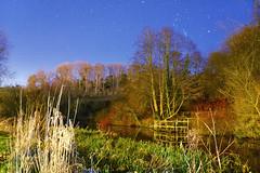 Starlit Nine Springs Lake, England, UK (Beardy Vulcan) Tags: winter england lake star january somerset 2016 starlit ninespringslake