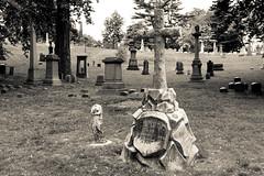 Claude (Green-Wood Cemetery) (Torsten Reimer) Tags: newyorkcity trees friedhof usa newyork cemetery grave graveyard grass brooklyn us memorial unitedstates greenwoodcemetery unitedstatesofamerica northamerica grabstein gravestones grabkreuz fujifilmx100t