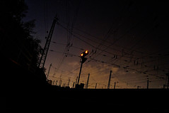 ([gegendasgrau]) Tags: city railroad light sky urban plants nature night licht mood moody nightshot nacht natur pflanzen perspective himmel atmosphere eisenbahn railway cables wires stadt nightlight rails environment nightsky signal leben perspektive catenary urbanlife ambiance umwelt oberleitung trackside strommast 2015 nachthimmel atmo