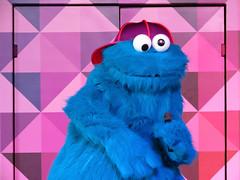 Cookie Monster (meeko_) Tags: show africa monster gardens tampa rocks cookie florida elmo entertainment sesamestreet characters muppet cookiemonster themepark buschgardens busch buschgardenstampa buschgardensafrica buschgardenstampabay elmorocks muppetcharacters buschgardenscharacters sesamestreetsafarioffun sunnydaytheater