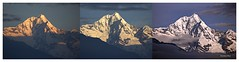 Transition of Colour over Forked Peak,Manul,Sikkim (Anindya Roy Photography (catching up)) Tags: sun india mountain snow nature sunrise canon landscape peak himalaya sikkim kanchendzonga kanchenjungha khangchendzonga forkedpeak