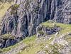 9Q6A1876 (2)-3 (Alinbidford) Tags: waterfall lakedistrict cumbria theband rockclimbers windermere buttermere hillwalking ullswater loweswater wrynosepass greyfriar ariaforce redpike thirlmere sidepike bowfell greywagtail lowfell langdalepikes dungeonghyll swirlhow hallinfell arthurspike mellbreak churchbridge scaleforce fellbarrow hencomb greatcarrs littlemellfell wetherhill wetsideedge wrynosebottom alancurtis lingmoortarn sourfootfell loadpothill greatborne steelbrow holmeswood littledodd starlingdodd steelknotts littlecarrs alinbidford smithyfell hattergillhead loftbarrow flourterntarn brownhowes