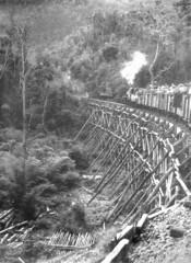 Thailand - Burma Railway - A military transport (railasia) Tags: trestle thailand infra reproduction kanchanaburi fourties jir burmarailway c56 metergauge km154 steamlocotrain